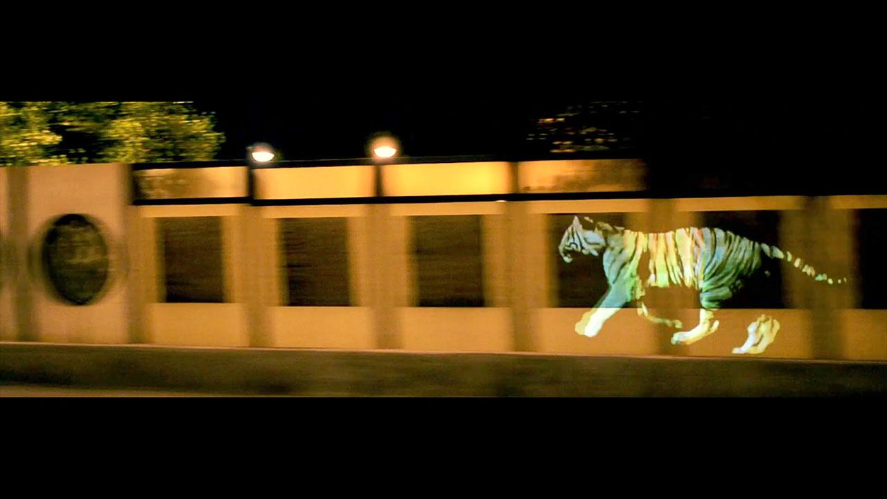 golden_tiger_01.jpg