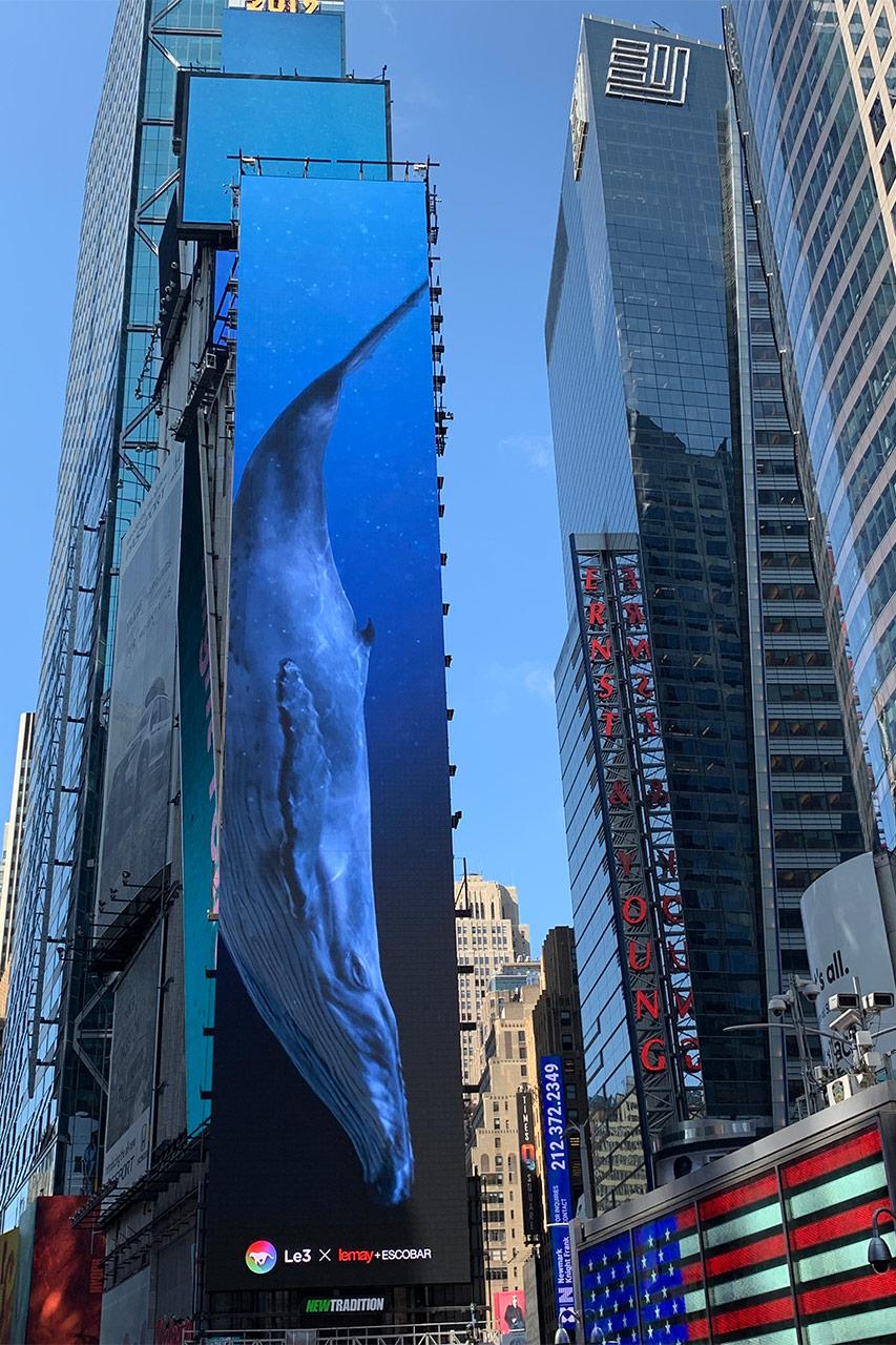 whales_02.jpg